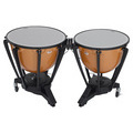 Timpani 4202 Back