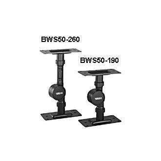 BWS50190