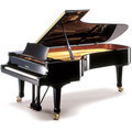 Premium Pianos