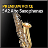Alto Sax