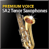 Tenor Sax