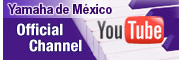 youtube (YDM)