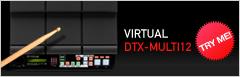Virtual-DTX-MULTI12