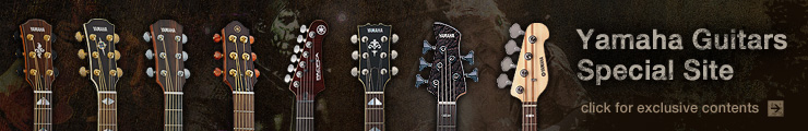 Guitars Special Site Banner