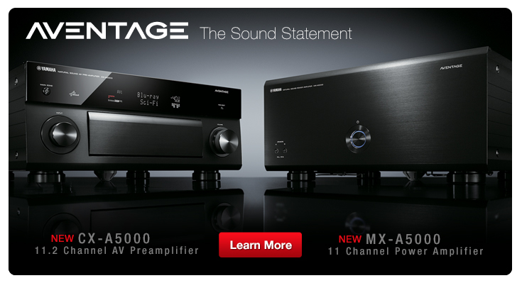 CX-A5000/11.2 channel AV preamplifier and MX-A5000/11 channel power amplifier
