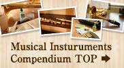 Musical Instruments Compendium