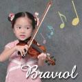 Braviol(ブラビオール)の分数バイオリン