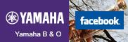 Facebook Banda y Orquesta