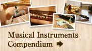 Musical instruments Compendium Web Site!