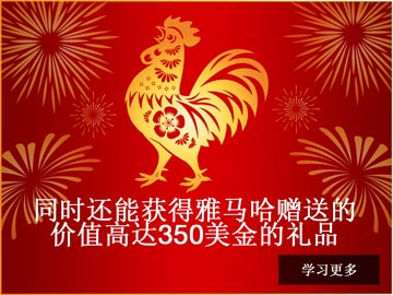 Chinese New Year Promotion 2017