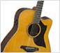 エレクトリックアコースティックギター Aシリーズ