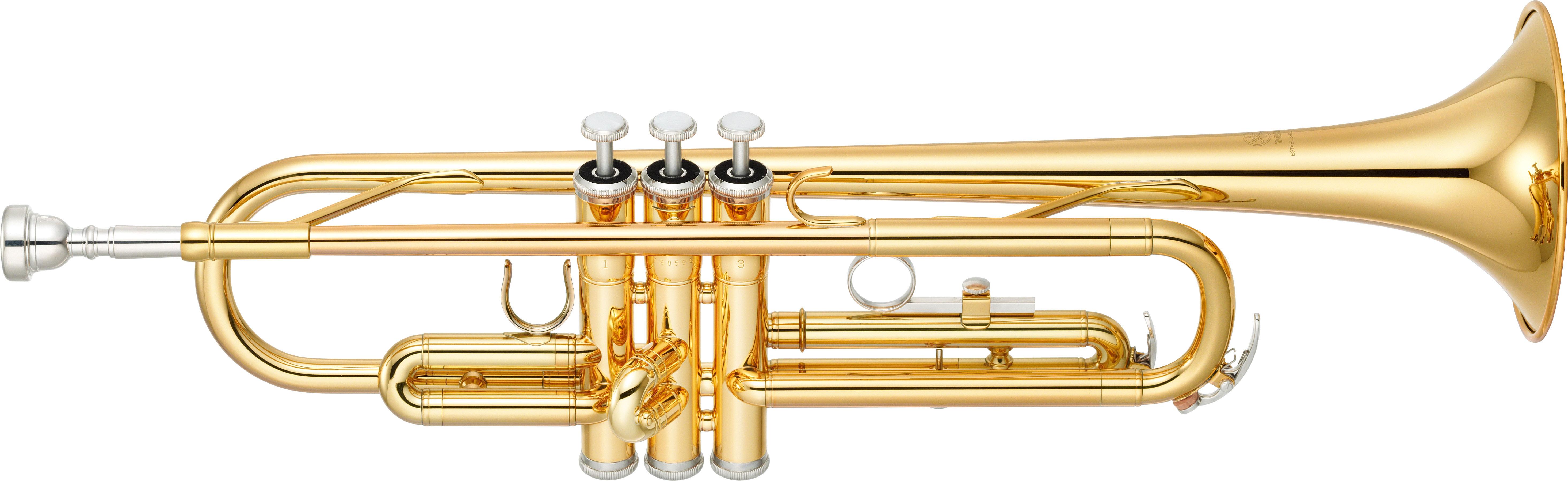 Купить музыкальные инструменты для детей в интернет-магазине