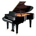 C5サイレントアンサンブルピアノ・プロフェッショナルモデルXP特注