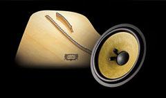 Spruce Cone Speaker
