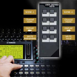 01v96i Yamaha Инструкция - фото 2