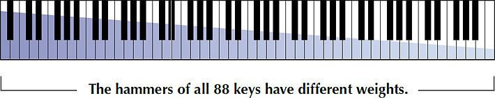 """88-key Linear Graded Hammers"" reproduce a unique weight for each key, a first for digital pianos."