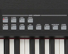 CP40 Stage Voice Category Buttons