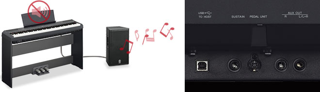 p 115 contemporary digital pianos digital pianos pianos keyboards musical instruments. Black Bedroom Furniture Sets. Home Design Ideas